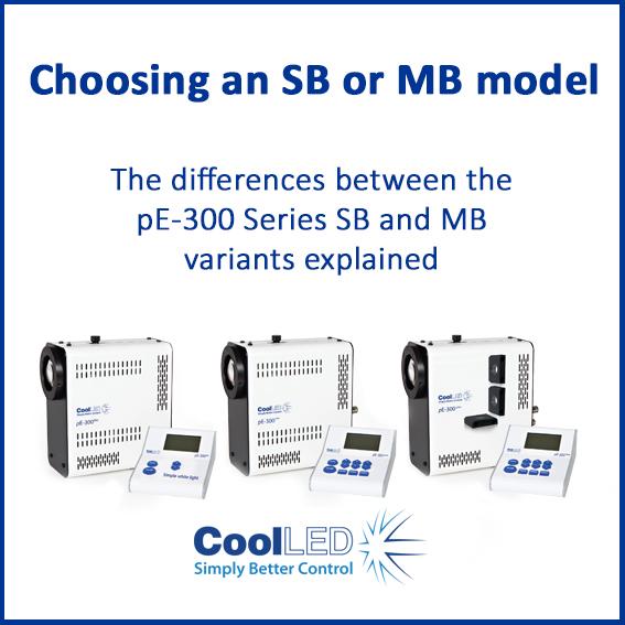 Choosing an SB or MB model