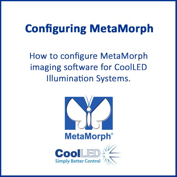 MetaMorph 1
