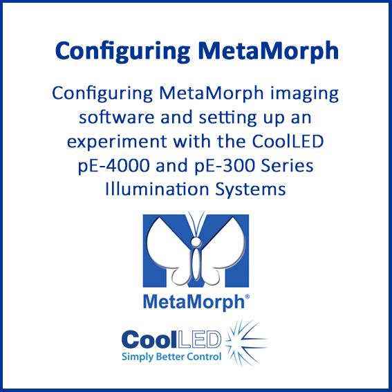 Metamorph thumbnail