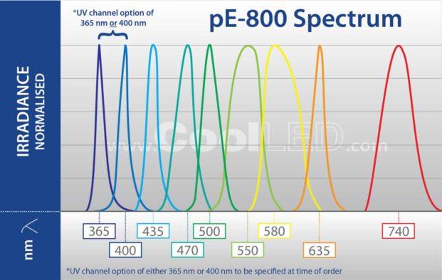 pE 800 Spectrum Graph 72dpi