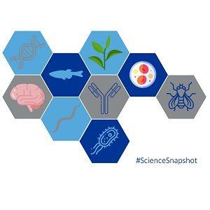 Science Snapshot square